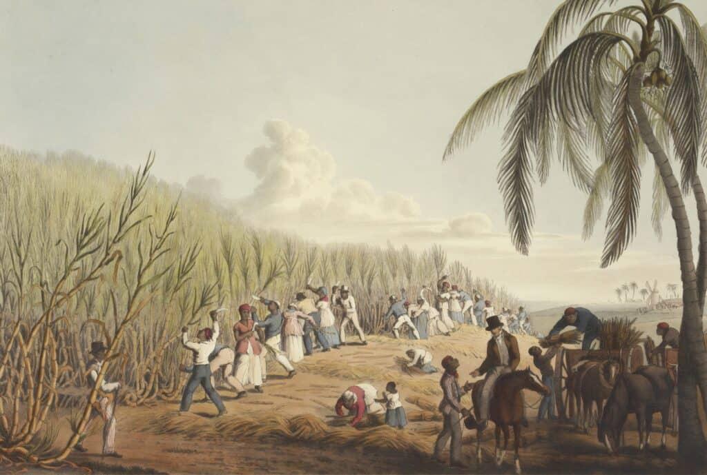 Slaver i sukkermarker
