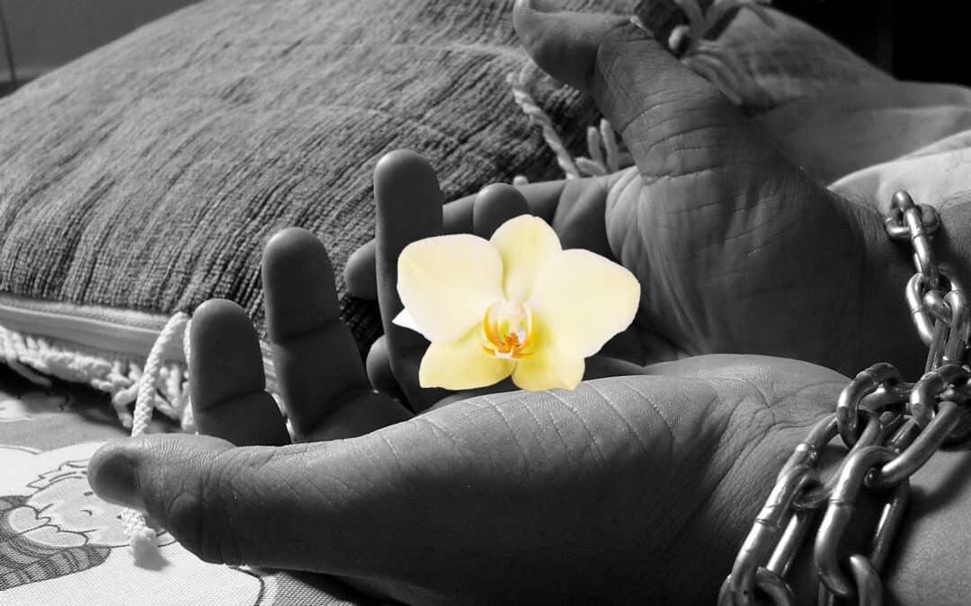 Slavedrengen, der revolutionerede vaniljeverdenen
